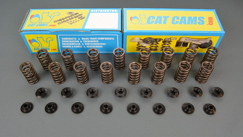 Kit molle valvola e piattelli Catcams Citroen e Peugeot 1